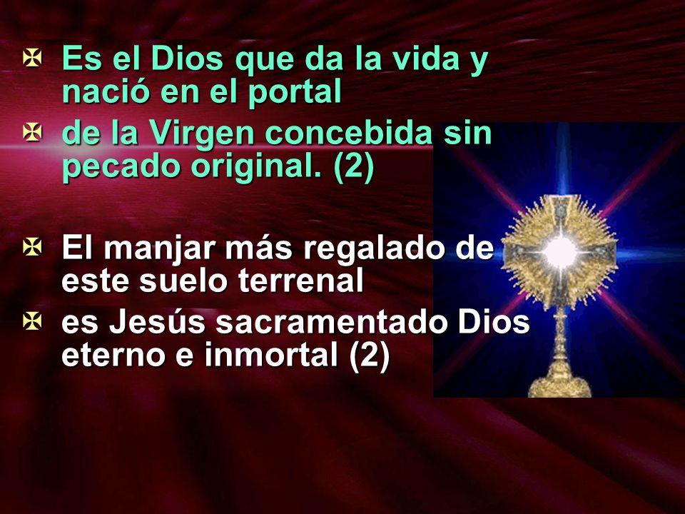 Es el Dios que da la vida y nació en el portal Es el Dios que da la vida y nació en el portal de la Virgen concebida sin pecado original. (2) de la Vi
