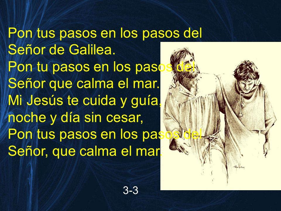 Pon tus pasos en los pasos del Señor de Galilea. Pon tu pasos en los pasos del Señor que calma el mar. Mi Jesús te cuida y guía, noche y día sin cesar