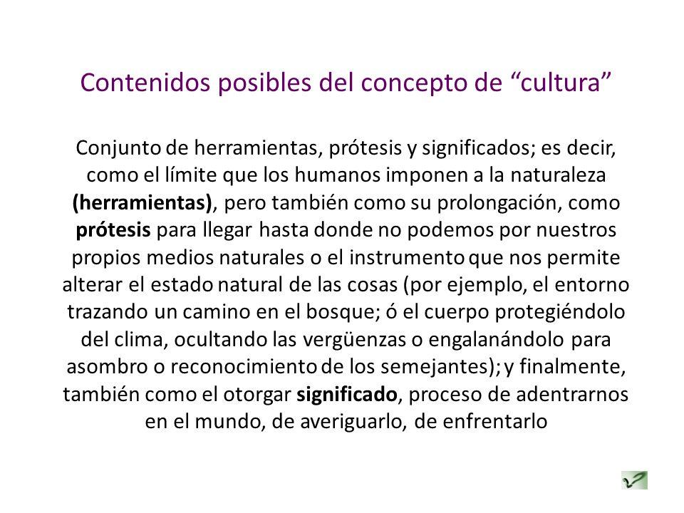 Contenidos posibles del concepto de cultura Conjunto de herramientas, prótesis y significados; es decir, como el límite que los humanos imponen a la n