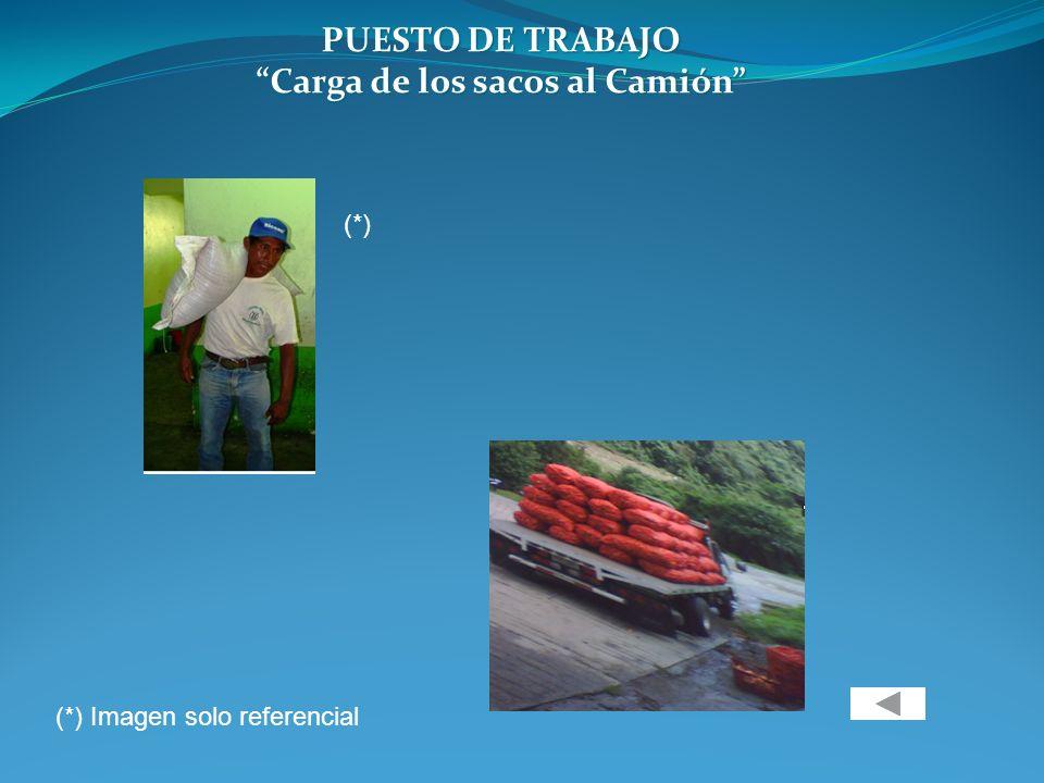 PUESTO DE TRABAJO Carga de los sacos al Camión (*) (*) Imagen solo referencial
