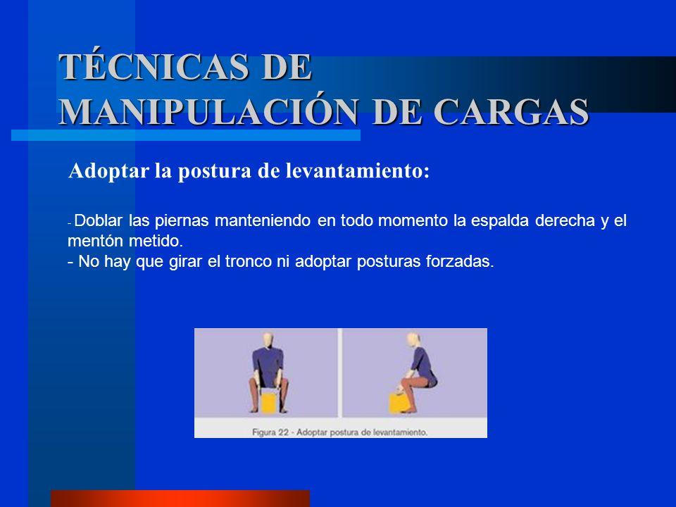Adoptar la postura de levantamiento: - Doblar las piernas manteniendo en todo momento la espalda derecha y el mentón metido. - No hay que girar el tro