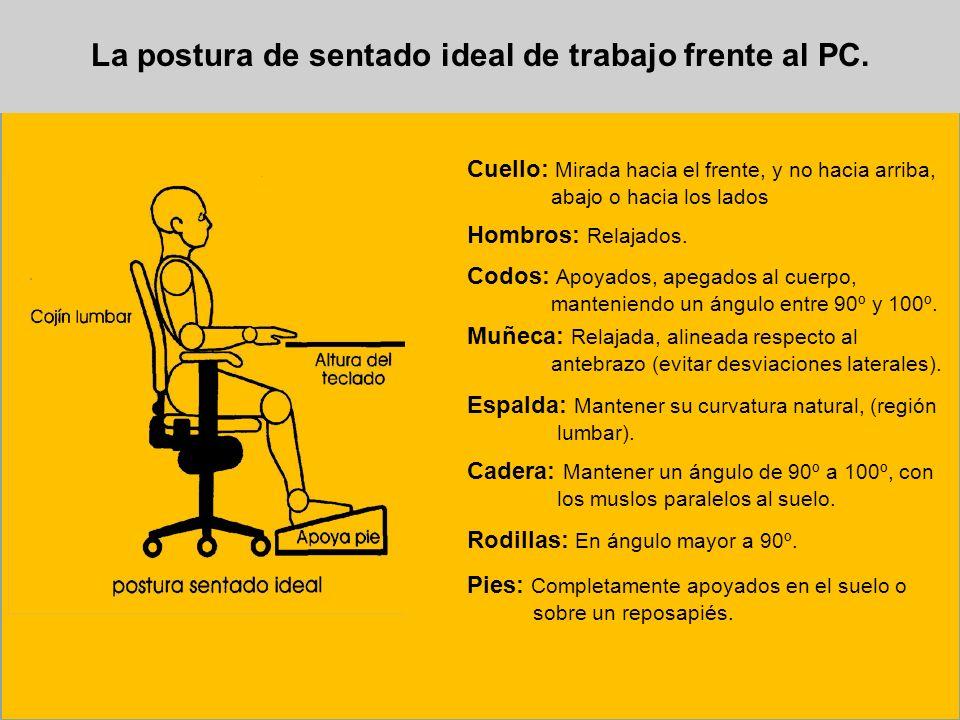 La postura de sentado ideal de trabajo frente al PC. Cuello: Mirada hacia el frente, y no hacia arriba, abajo o hacia los lados Hombros: Relajados. Co