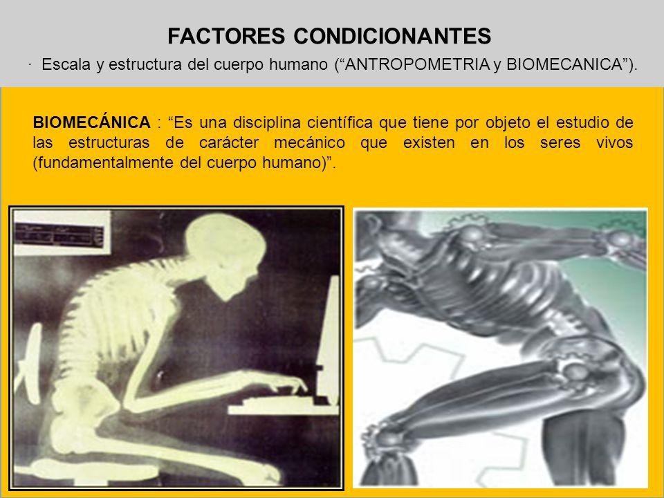 FACTORES CONDICIONANTES · Escala y estructura del cuerpo humano (ANTROPOMETRIA y BIOMECANICA). BIOMECÁNICA : Es una disciplina científica que tiene po