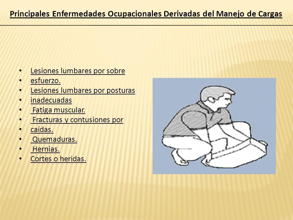 Principales Enfermedades Ocupacionales Derivadas del Manejo de Cargas Lesiones lumbares por sobre esfuerzo. Lesiones lumbares por posturas inadecuadas