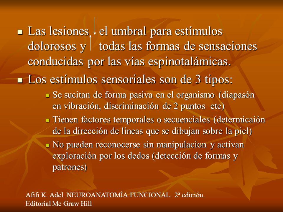 Las lesiones el umbral para estímulos dolorosos y todas las formas de sensaciones conducidas por las vías espinotalámicas. Las lesiones el umbral para