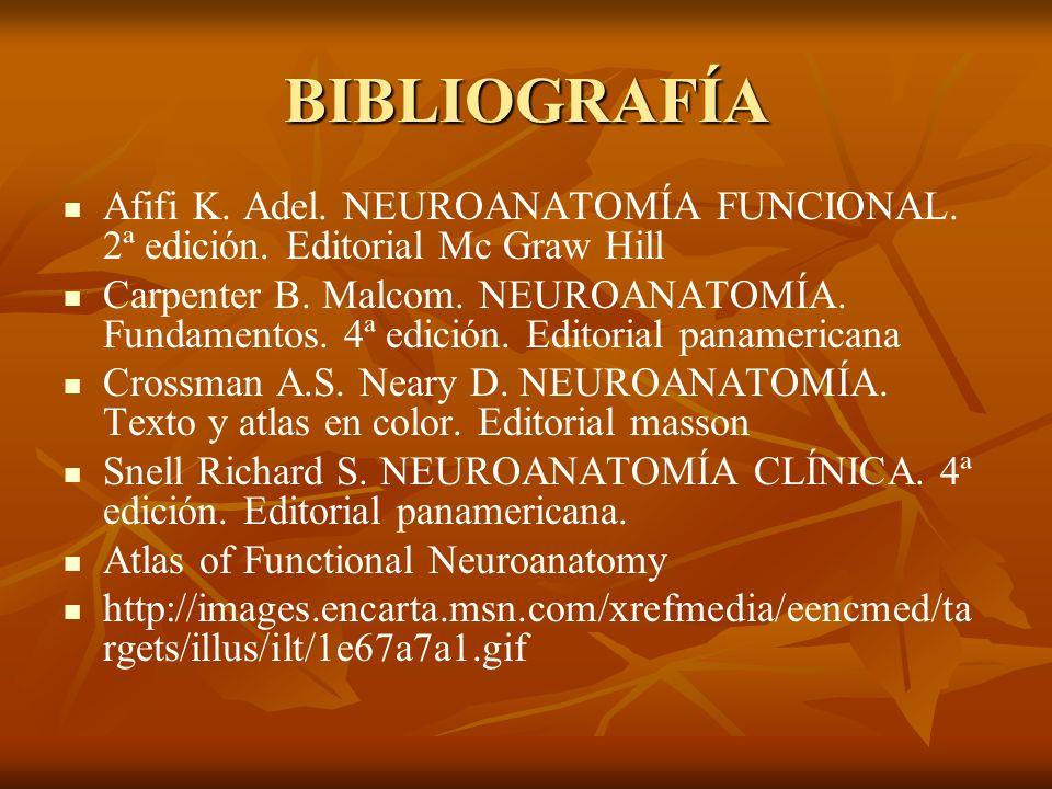 BIBLIOGRAFÍA Afifi K. Adel. NEUROANATOMÍA FUNCIONAL. 2ª edición. Editorial Mc Graw Hill Carpenter B. Malcom. NEUROANATOMÍA. Fundamentos. 4ª edición. E