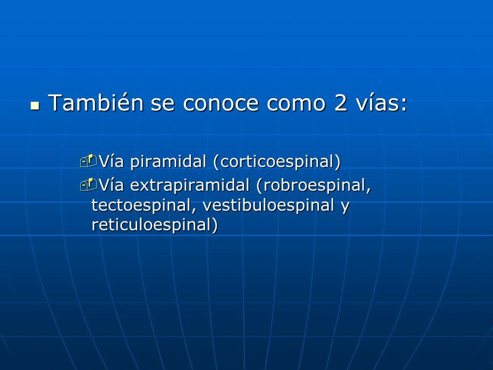 También se conoce como 2 vías: También se conoce como 2 vías: Vía piramidal (corticoespinal) Vía piramidal (corticoespinal) Vía extrapiramidal (robroe