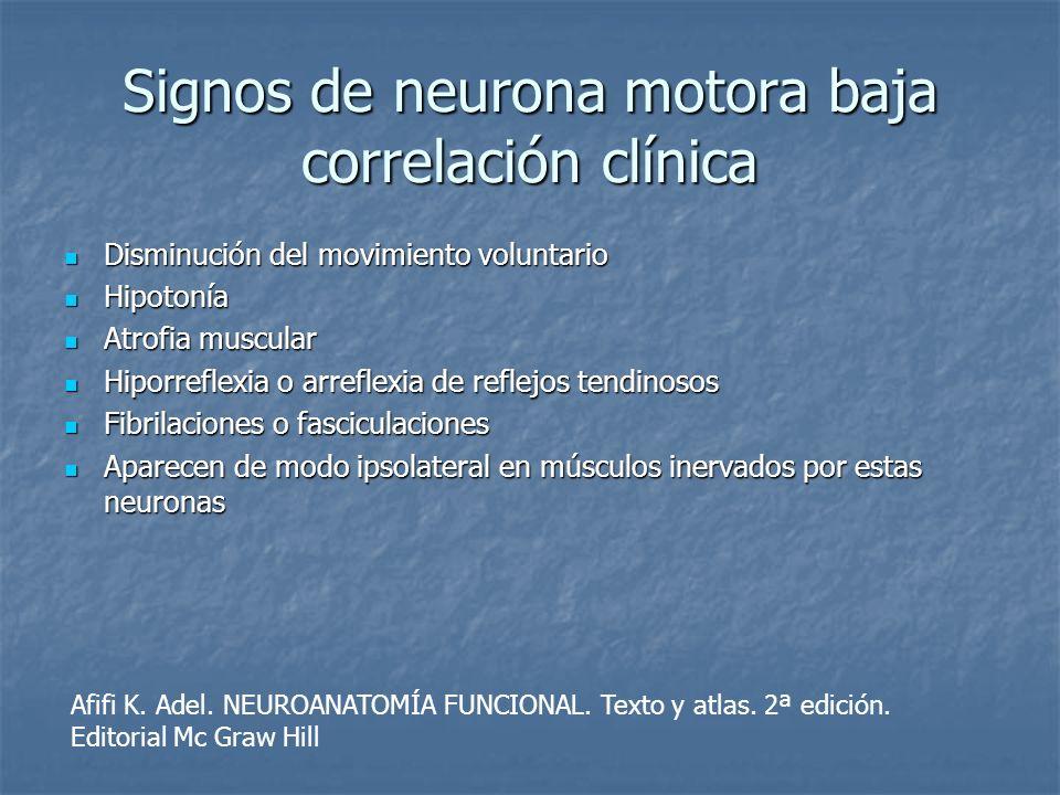 Signos de neurona motora baja correlación clínica Disminución del movimiento voluntario Disminución del movimiento voluntario Hipotonía Hipotonía Atro