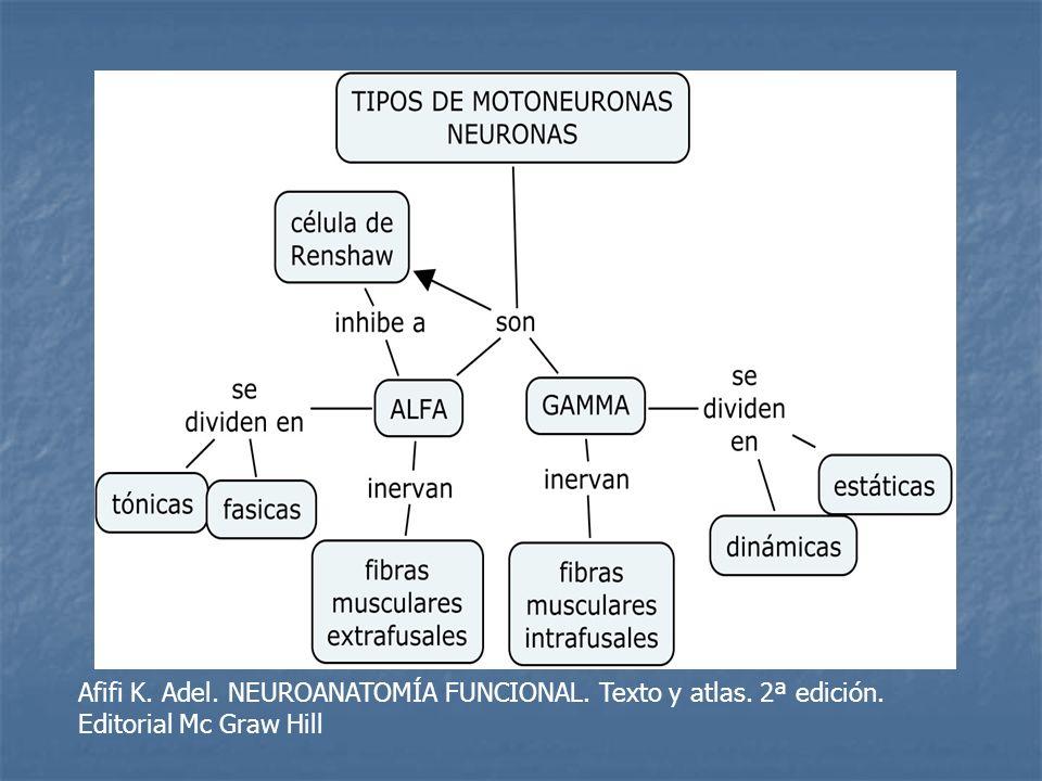 Afifi K. Adel. NEUROANATOMÍA FUNCIONAL. Texto y atlas. 2ª edición. Editorial Mc Graw Hill