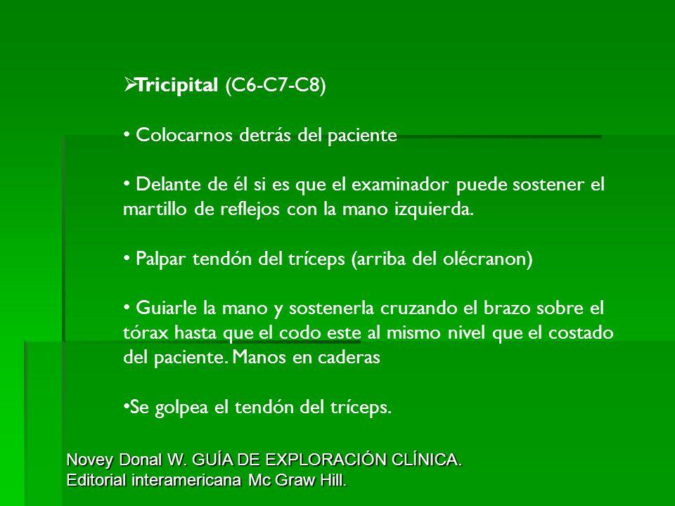 Tricipital (C6-C7-C8) Colocarnos detrás del paciente Delante de él si es que el examinador puede sostener el martillo de reflejos con la mano izquierd