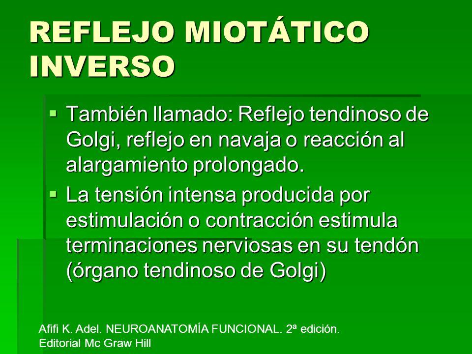 REFLEJO MIOTÁTICO INVERSO También llamado: Reflejo tendinoso de Golgi, reflejo en navaja o reacción al alargamiento prolongado. También llamado: Refle
