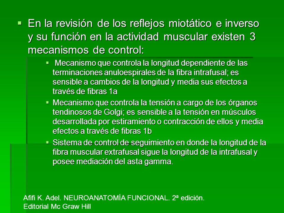 En la revisión de los reflejos miotático e inverso y su función en la actividad muscular existen 3 mecanismos de control: En la revisión de los reflej