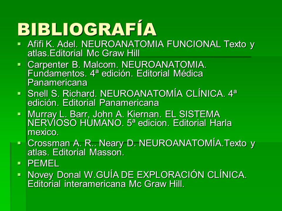 BIBLIOGRAFÍA Afifi K. Adel. NEUROANATOMIA FUNCIONAL Texto y atlas.Editorial Mc Graw Hill Afifi K. Adel. NEUROANATOMIA FUNCIONAL Texto y atlas.Editoria