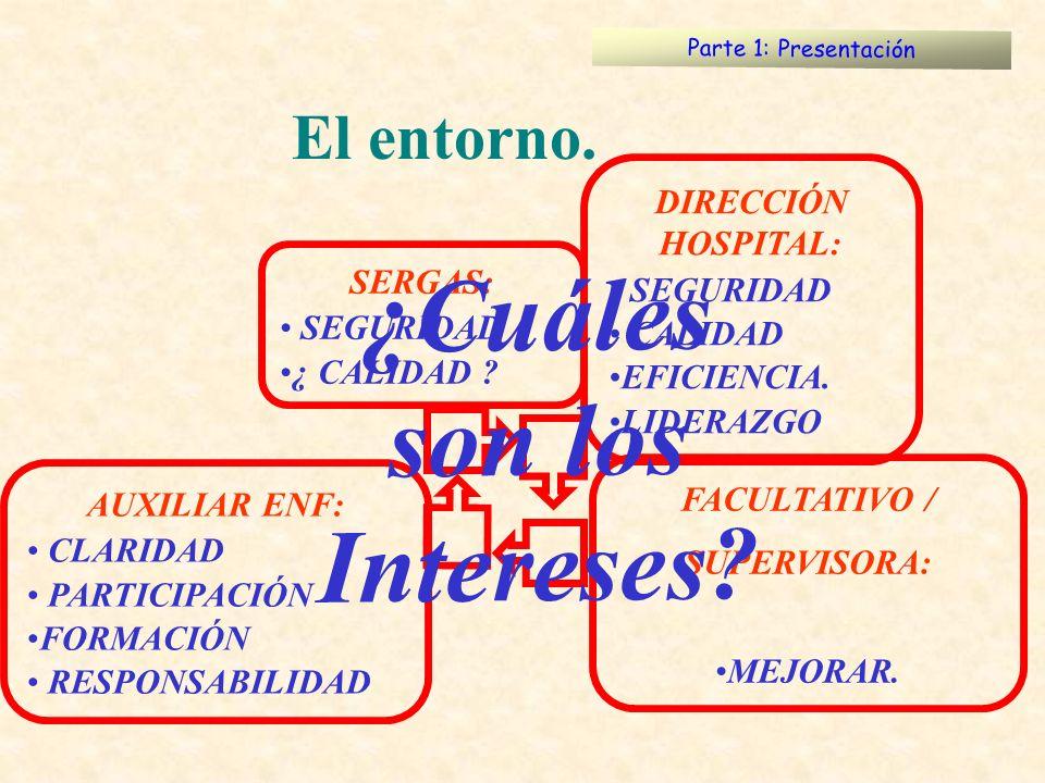 Parte 1: Presentación El entorno. SERGAS: SEGURIDAD ¿ CALIDAD ? DIRECCIÓN HOSPITAL: SEGURIDAD CALIDAD EFICIENCIA. LIDERAZGO FACULTATIVO / SUPERVISORA: