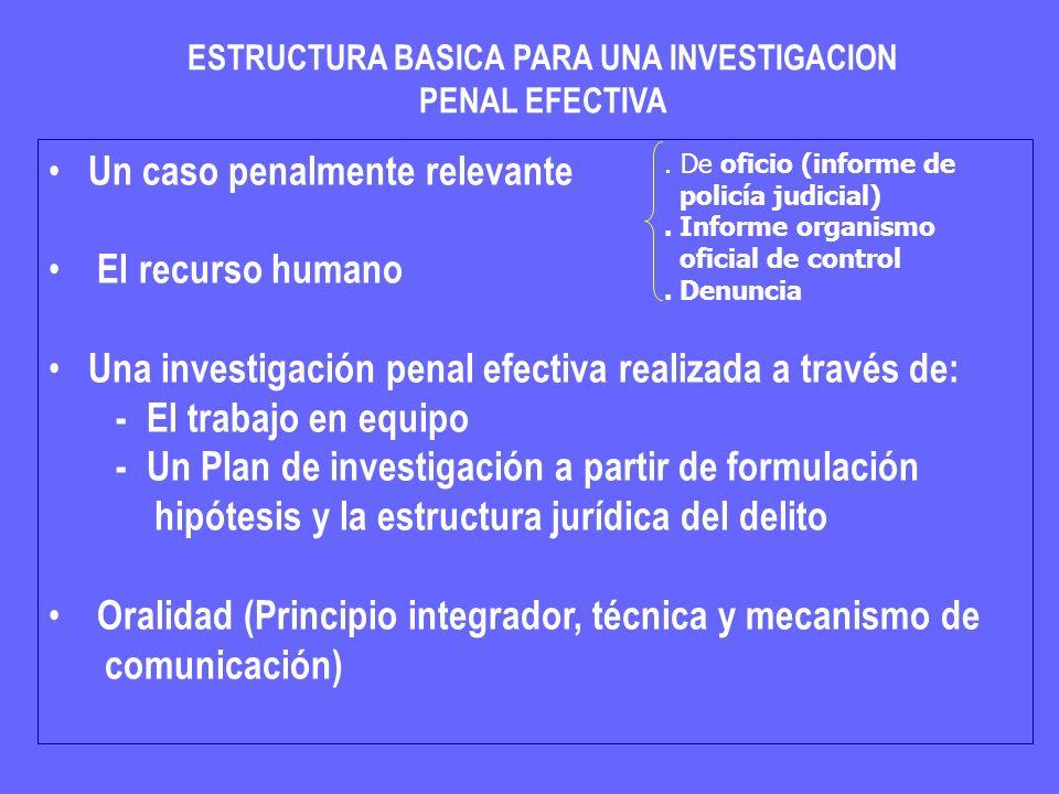 ESTRUCTURA BASICA PARA UNA INVESTIGACION PENAL EFECTIVA Un caso penalmente relevante El recurso humano Una investigación penal efectiva realizada a tr