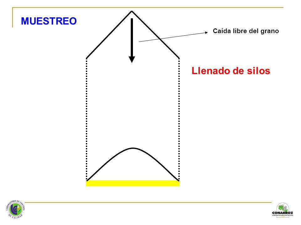 PARALELEPÍPEDO V = l x a x h Altura (h) Ancho (a)Largo (l) Kg de arroz = l x a x h x d x FC = l = largo en metros a = ancho en metros h = altura en metros d = densidad en kg / m 3 FC = Factor de compactación (3%)