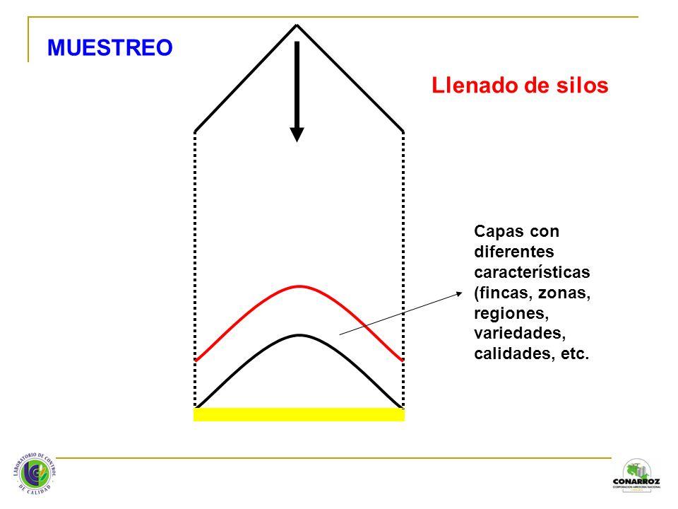 Llenado de silos Capas con diferentes características (fincas, zonas, regiones, variedades, calidades, etc. MUESTREO