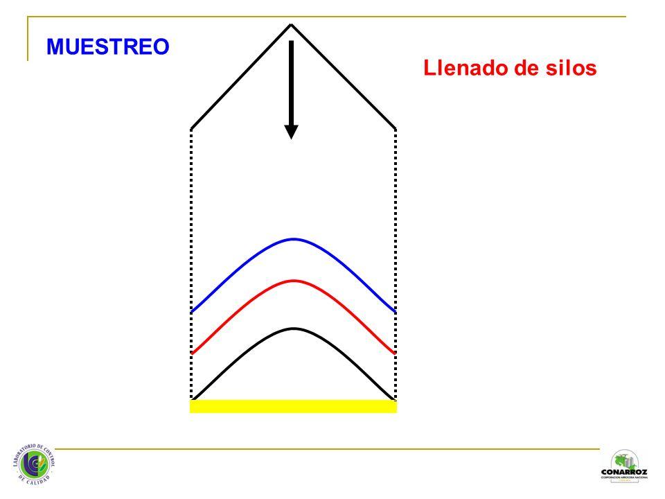 Consejos para realizar inventarios en silos: 1.La seguridad de las personas es lo más importante: a.Utilizar equipo de protección.