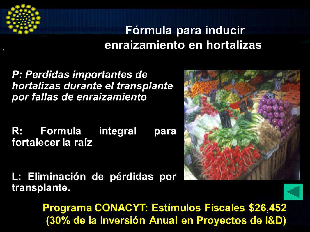 . P: Perdidas importantes de hortalizas durante el transplante por fallas de enraizamiento R: Formula integral para fortalecer la raíz L: Eliminación