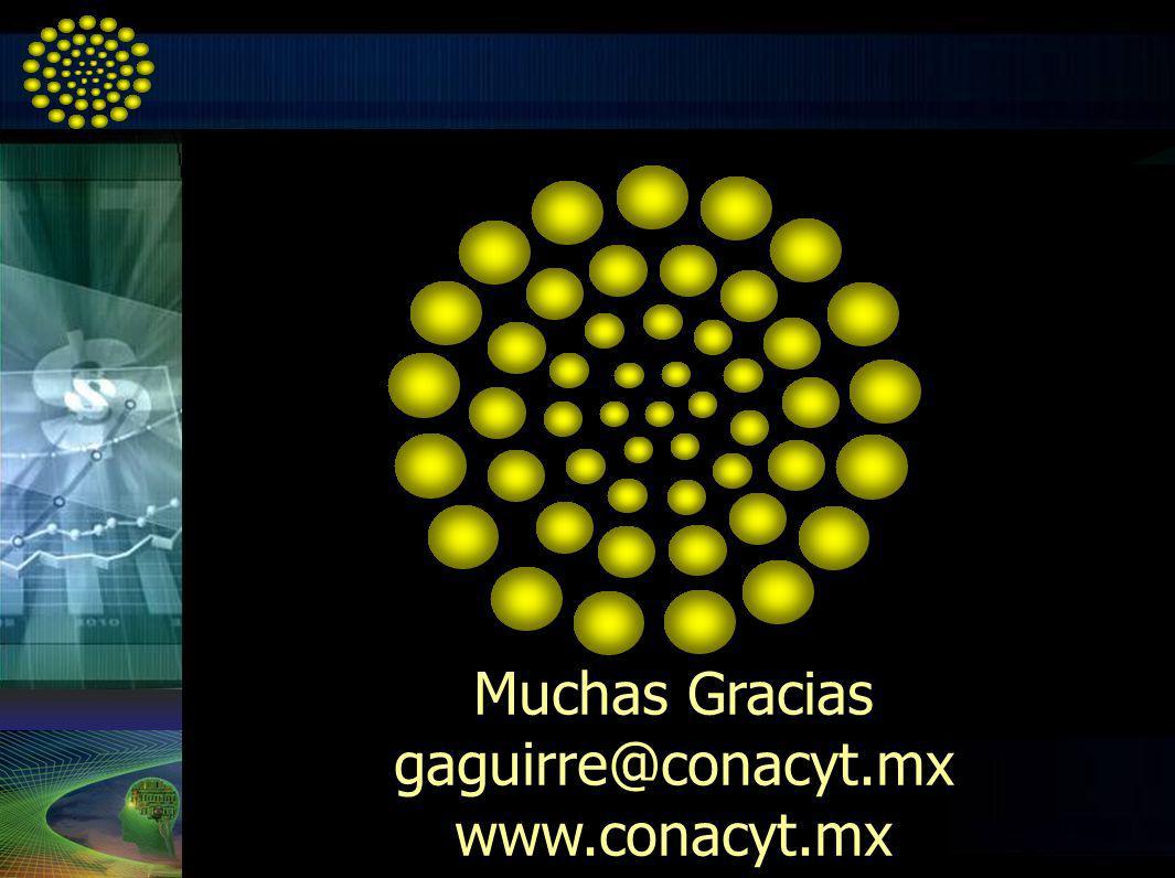 Muchas Gracias gaguirre@conacyt.mx www.conacyt.mx