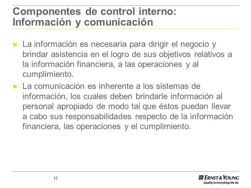 12 Componentes de control interno: Información y comunicación La información es necesaria para dirigir el negocio y brindar asistencia en el logro de