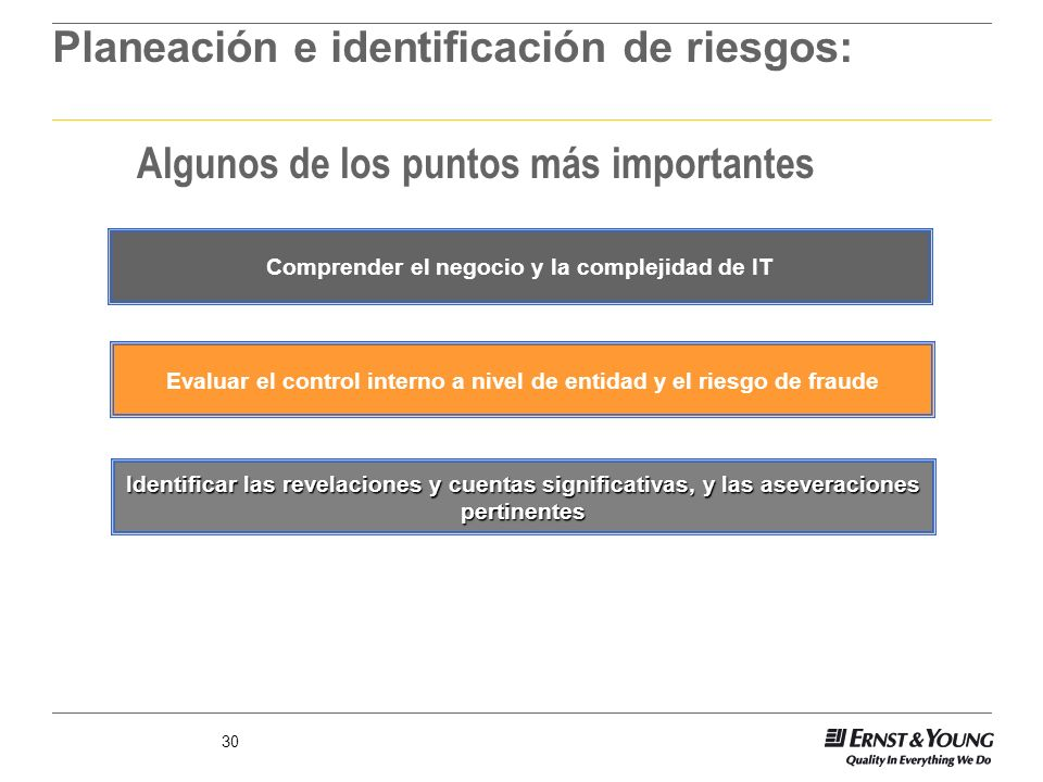 30 Comprender el negocio y la complejidad de IT Identificar las revelaciones y cuentas significativas, y las aseveraciones pertinentes Evaluar el cont