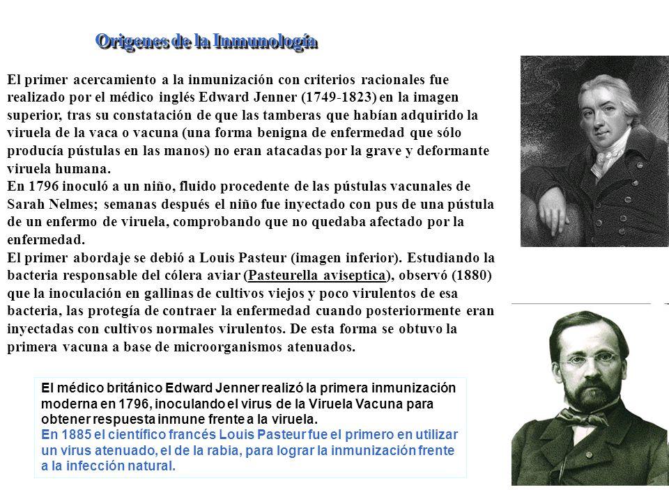 Origenes de la Inmunología El primer acercamiento a la inmunización con criterios racionales fue realizado por el médico inglés Edward Jenner (1749-18