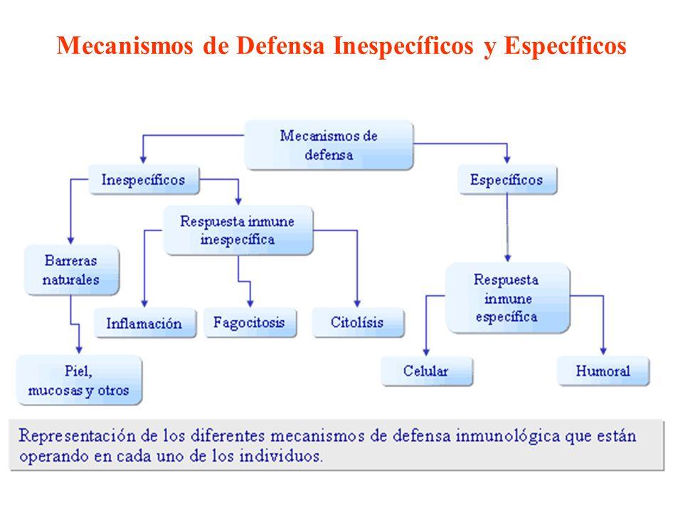Mecanismos de Defensa Inespecíficos y Específicos