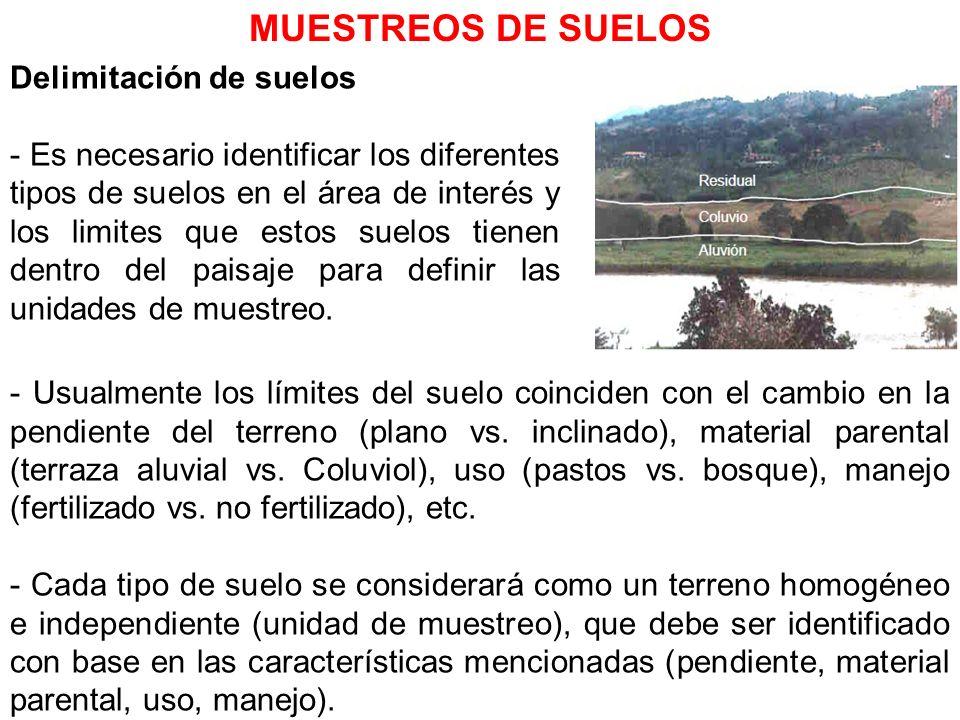 Delimitación de suelos - Es necesario identificar los diferentes tipos de suelos en el área de interés y los limites que estos suelos tienen dentro de