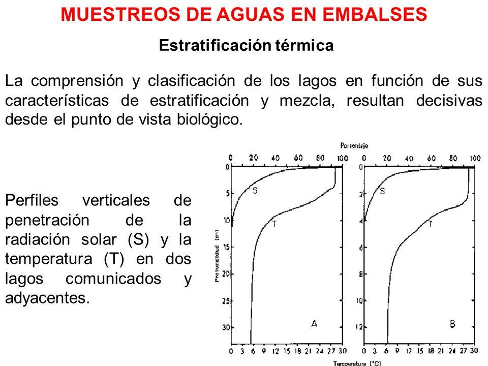 Estratificación térmica La comprensión y clasificación de los lagos en función de sus características de estratificación y mezcla, resultan decisivas