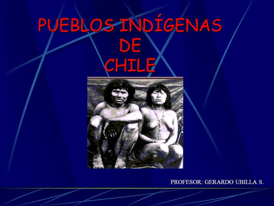 2.Mapuches Pueblo sedentario ubicado entre el río choapa y el seno de Reloncaví Practicaron la agricultura, caza y alfarería Su idioma era el Mapudungún y su religión espiritista Su organización social era la familia o Lov El jefe de cada Lov se llamaba Lonco En caso de guerra se designaba un jefe supremo o Cacique