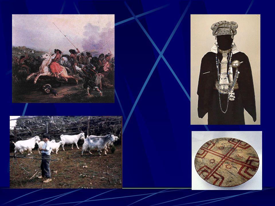 2.Mapuches Pueblo sedentario ubicado entre el río choapa y el seno de Reloncaví Practicaron la agricultura, caza y alfarería Su idioma era el Mapudung