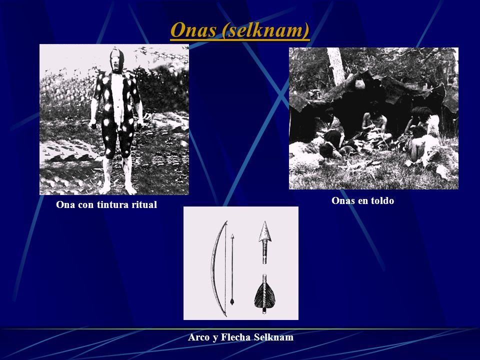 Vivian como cazadores nómades que deambulaban en busca de su alimento a lo largo de tierra del fuego También llamados Selknam (hombre del norte) Eran