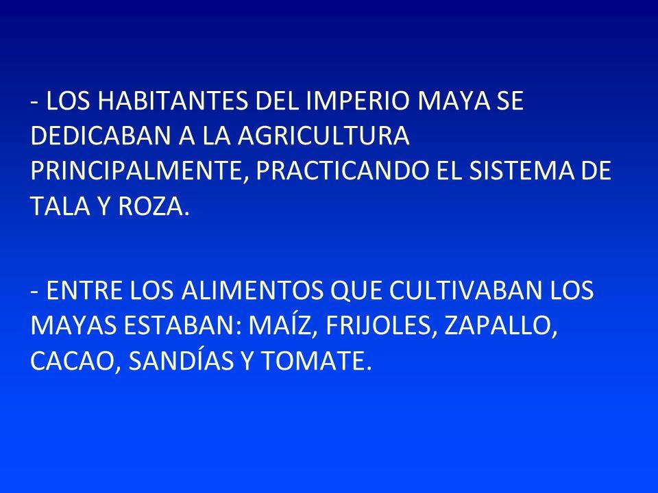 - LOS HABITANTES DEL IMPERIO MAYA SE DEDICABAN A LA AGRICULTURA PRINCIPALMENTE, PRACTICANDO EL SISTEMA DE TALA Y ROZA. - ENTRE LOS ALIMENTOS QUE CULTI