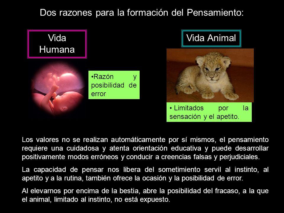 Dos razones para la formación del Pensamiento: Vida Humana Vida Animal Limitados por la sensación y el apetito.