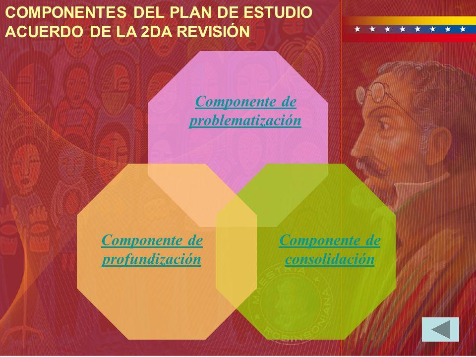 Componente de problematización Componente de consolidación Componente de profundización COMPONENTES DEL PLAN DE ESTUDIO ACUERDO DE LA 2DA REVISIÓN