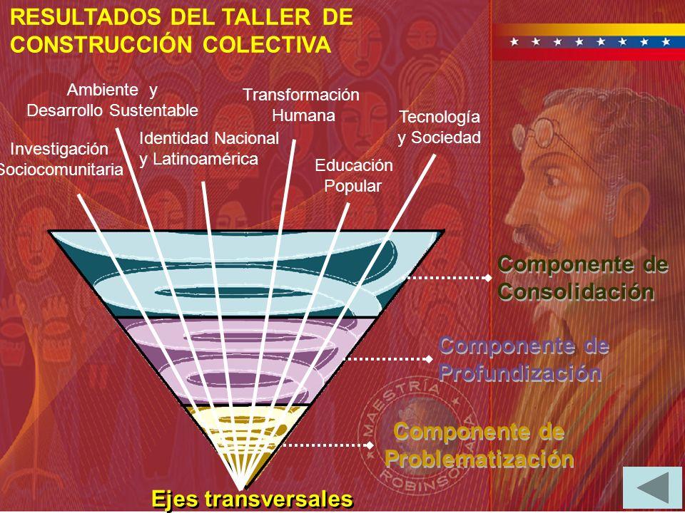 Identidad Nacional y Latinoamérica Tecnología y Sociedad Investigación Sociocomunitaria Educación Popular Ambiente y Desarrollo Sustentable Transforma