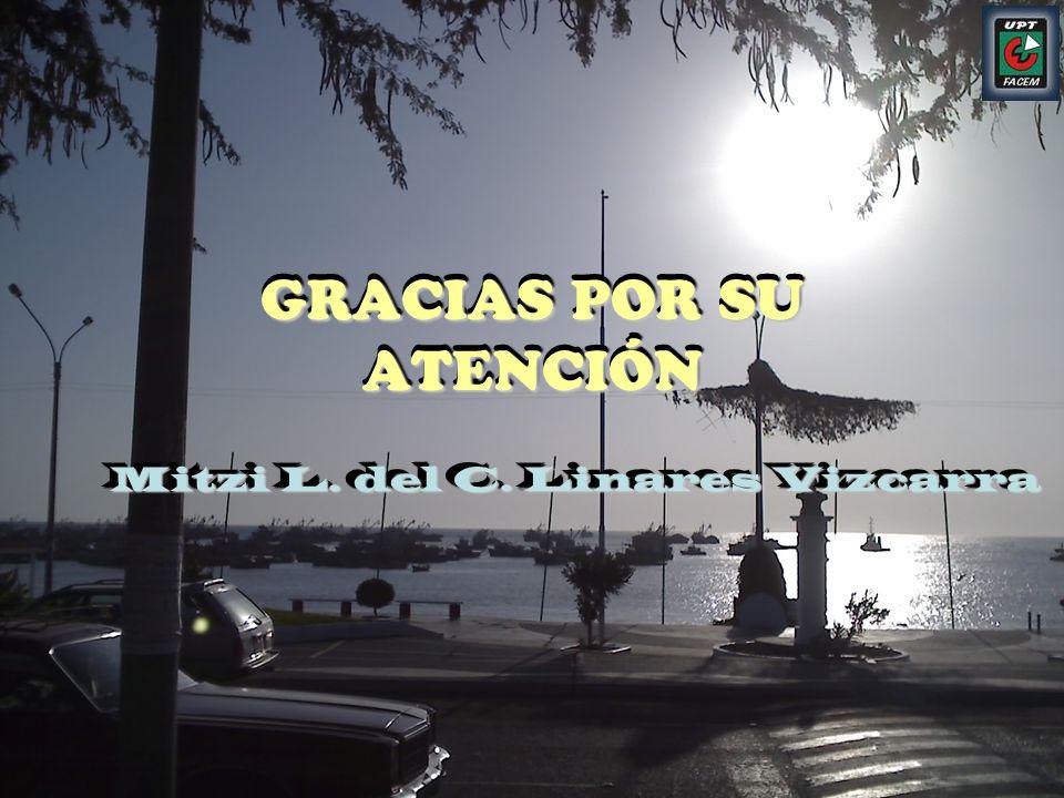 GRACIAS POR SU ATENCIÓN Mitzi L. del C. Linares Vizcarra