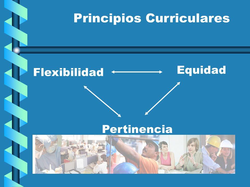 Principios Curriculares Flexibilidad Pertinencia Equidad