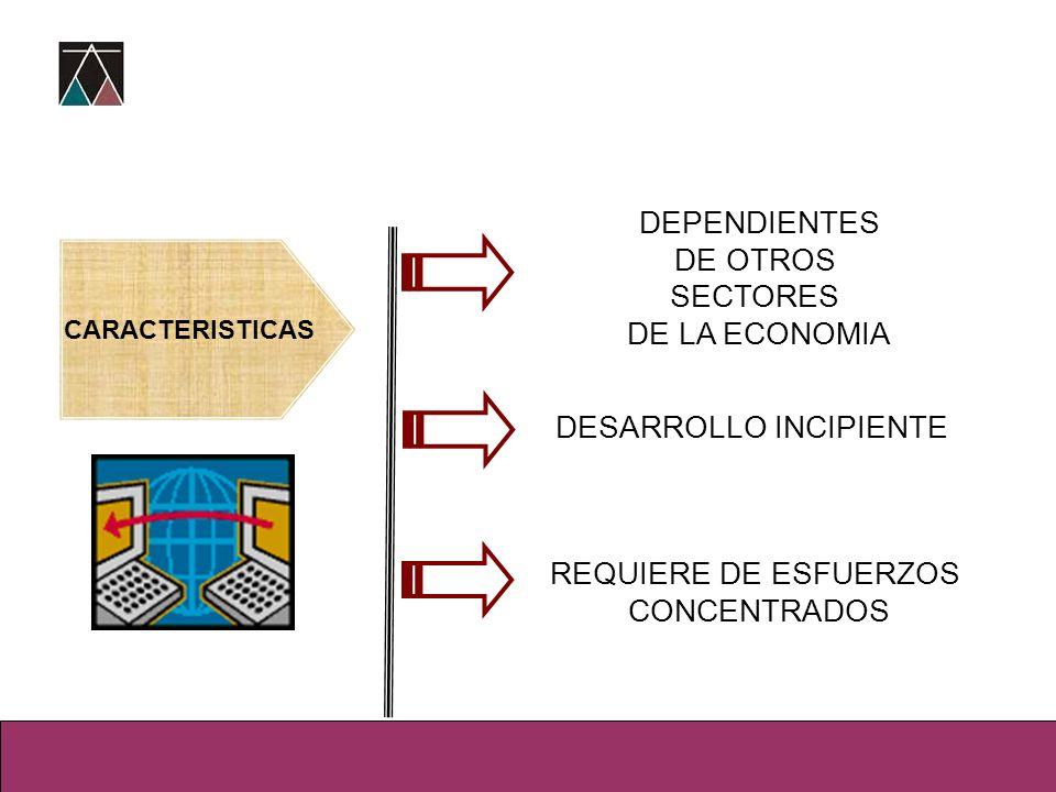 DEPENDIENTES DE OTROS SECTORES DE LA ECONOMIA DESARROLLO INCIPIENTE REQUIERE DE ESFUERZOS CONCENTRADOS CARACTERISTICAS