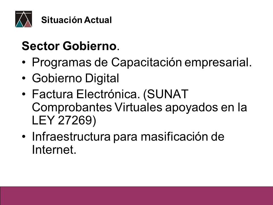 Sector Gobierno. Programas de Capacitación empresarial. Gobierno Digital Factura Electrónica. (SUNAT Comprobantes Virtuales apoyados en la LEY 27269)