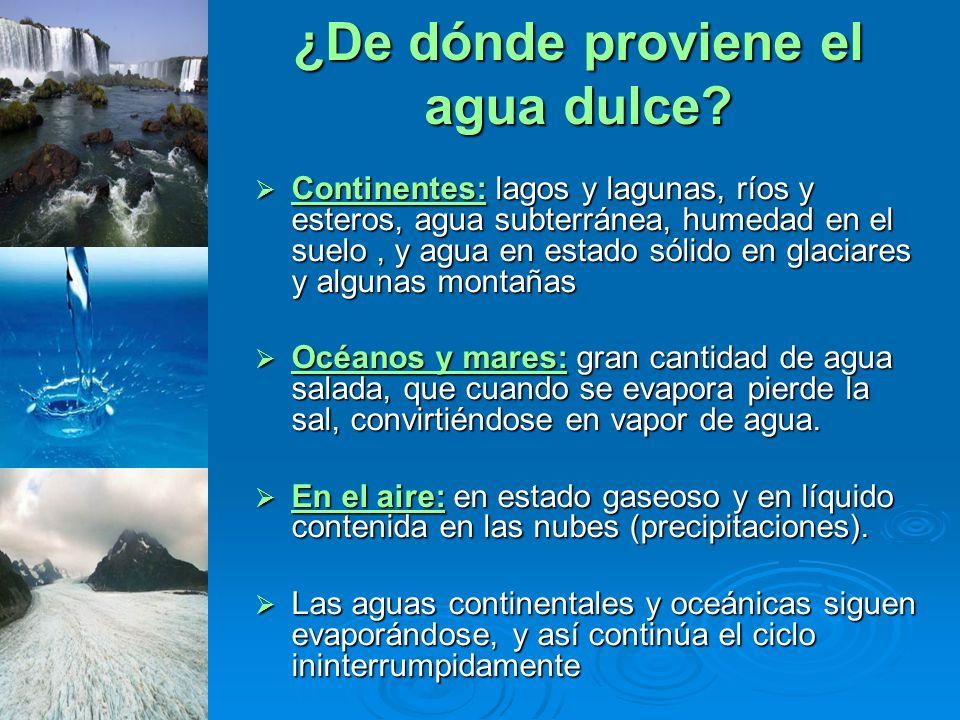 Continentes: lagos y lagunas, ríos y esteros, agua subterránea, humedad en el suelo, y agua en estado sólido en glaciares y algunas montañas Continent