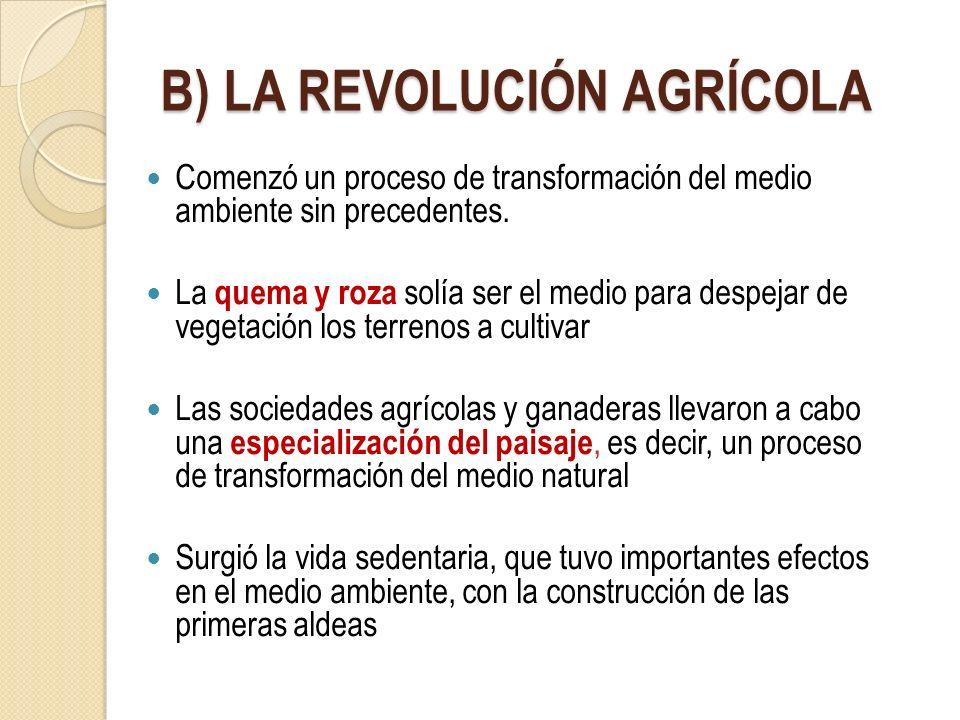 B) LA REVOLUCIÓN AGRÍCOLA Comenzó un proceso de transformación del medio ambiente sin precedentes. La quema y roza solía ser el medio para despejar de
