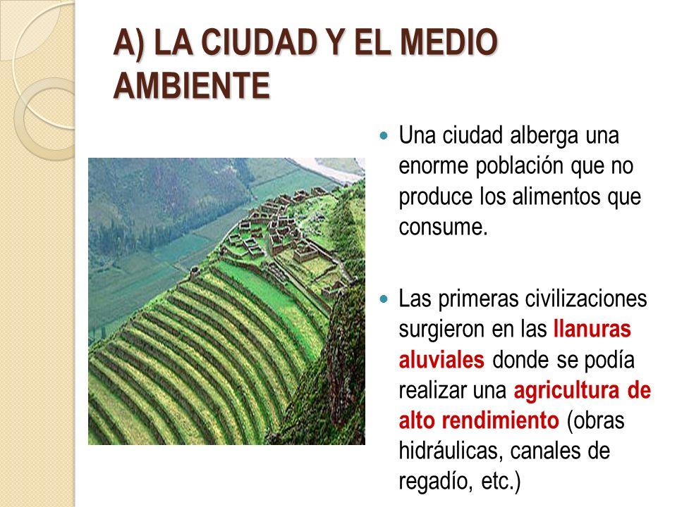 A) LA CIUDAD Y EL MEDIO AMBIENTE Una ciudad alberga una enorme población que no produce los alimentos que consume. Las primeras civilizaciones surgier