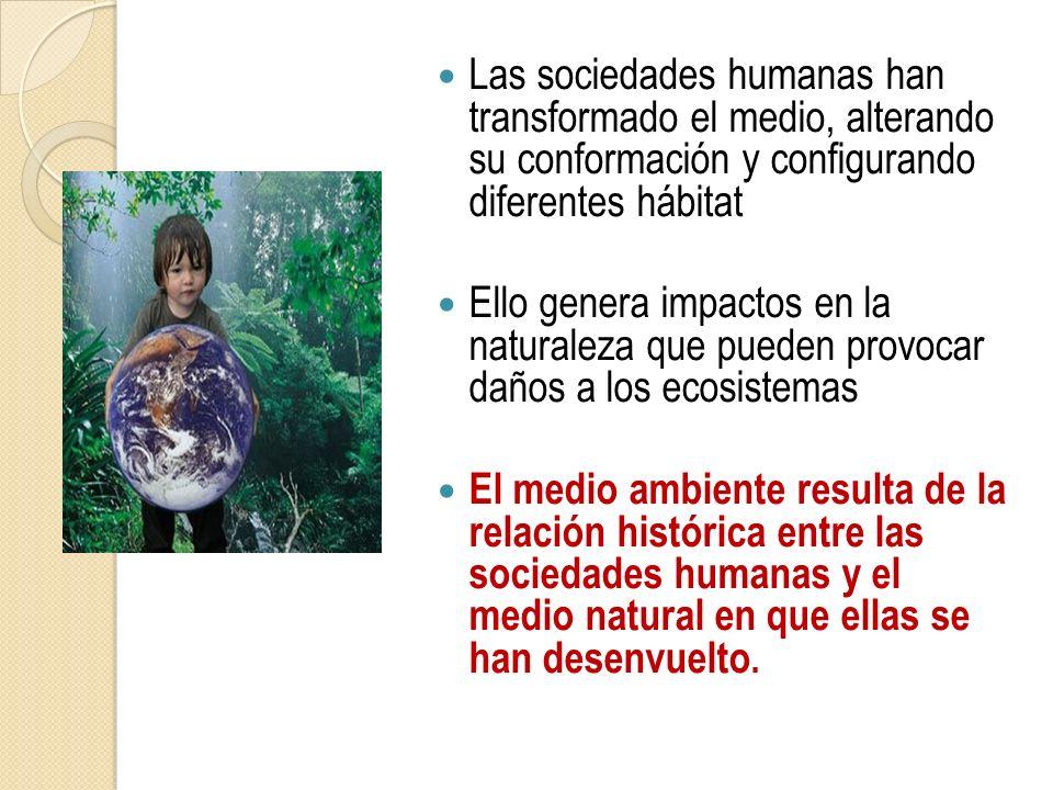Las sociedades humanas han transformado el medio, alterando su conformación y configurando diferentes hábitat Ello genera impactos en la naturaleza qu