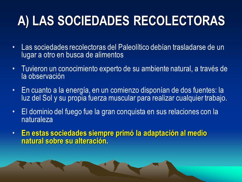 Las sociedades recolectoras del Paleolítico debían trasladarse de un lugar a otro en busca de alimentos Tuvieron un conocimiento experto de su ambient
