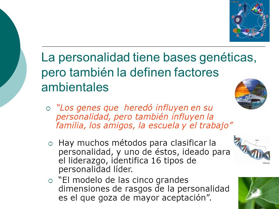 La personalidad tiene bases genéticas, pero también la definen factores ambientales Los genes que heredó influyen en su personalidad, pero también inf