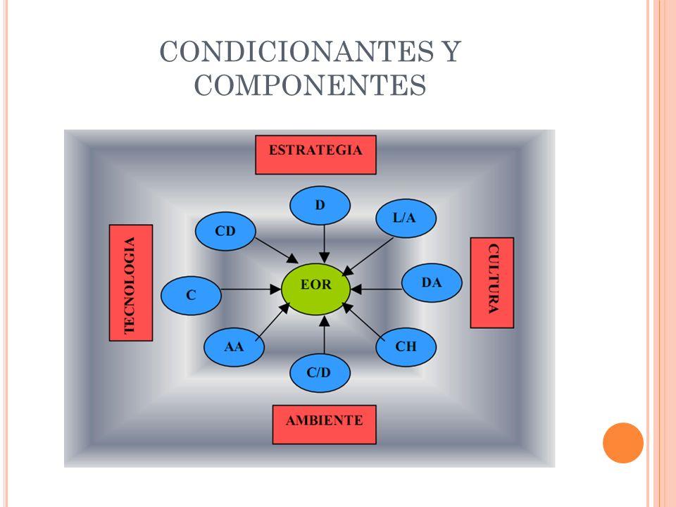 Son los elementos de origen exógeno.Nivel macro organizacional.