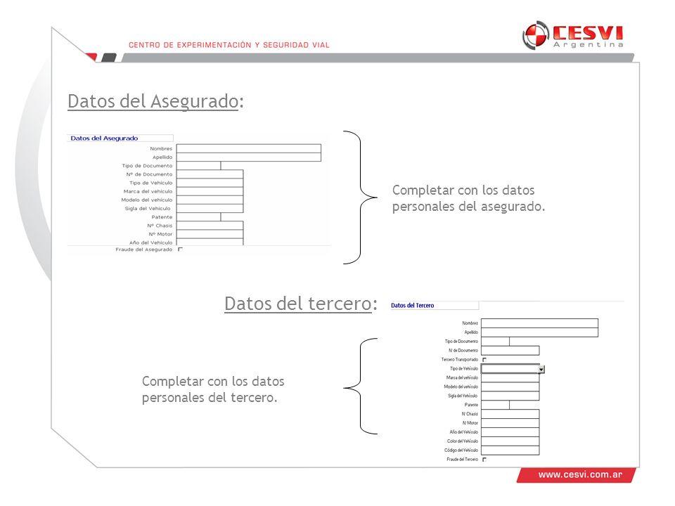 Datos del Asegurado: Completar con los datos personales del asegurado.
