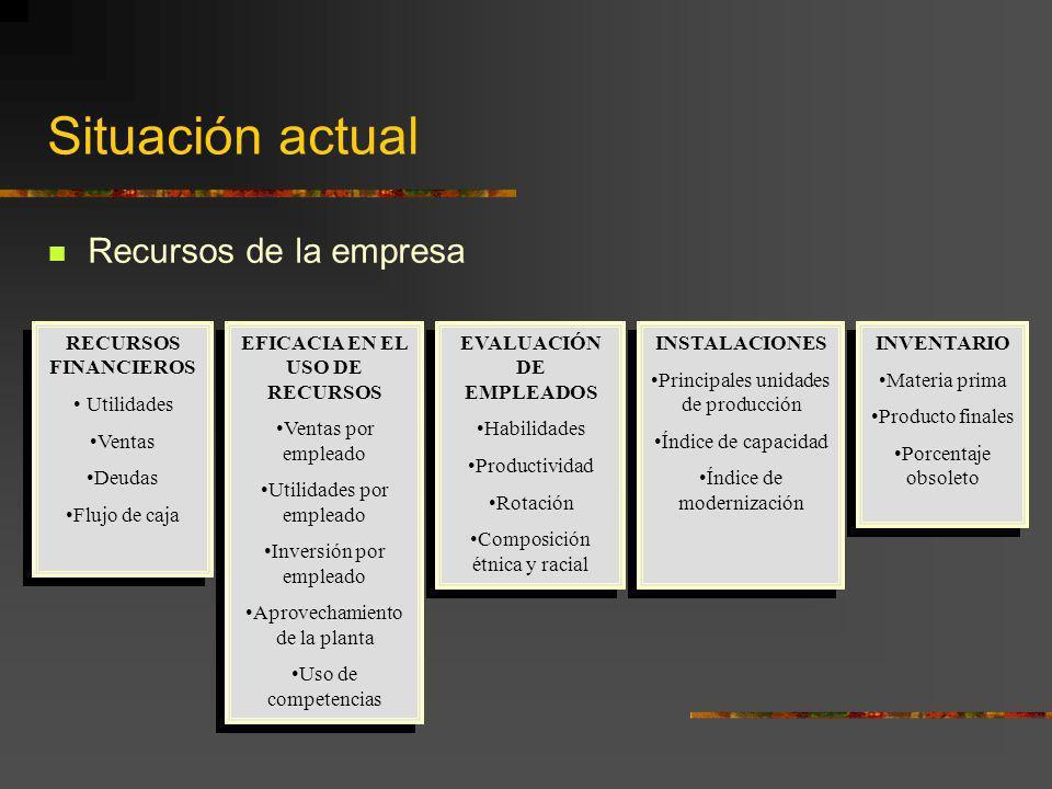 Situación actual Recursos de la empresa RECURSOS FINANCIEROS Utilidades Ventas Deudas Flujo de caja RECURSOS FINANCIEROS Utilidades Ventas Deudas Fluj